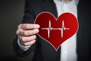 Zajímavosti o srdci člověka aneb co jste o tomto orgánu doposud netušili
