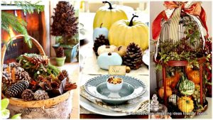 Nápady na rychlé a levné podzimní dekorace, které zvládne úplně každý. Vyzdobte si domov a přivítejte podzim stylově.
